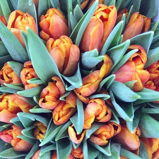 Оранжевые тюльпаны: букеты цветов на заказ Flowwow