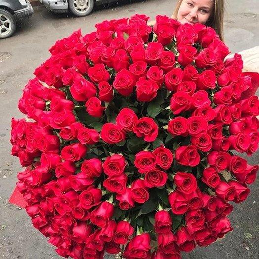 Букет 101 роза Страсть: букеты цветов на заказ Flowwow