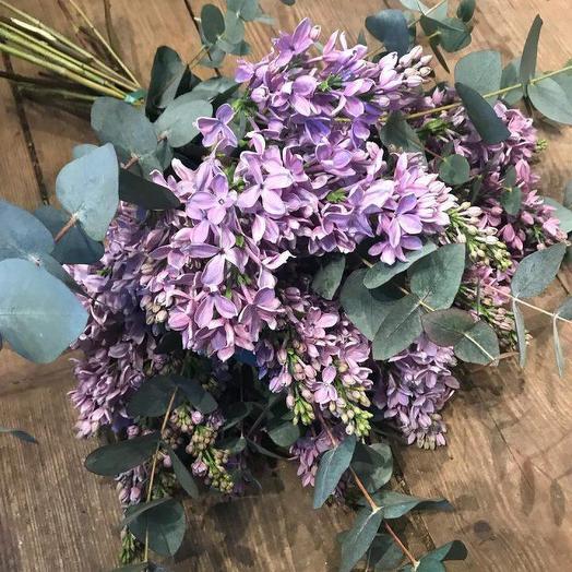 Сирень и эвкалипт: букеты цветов на заказ Flowwow