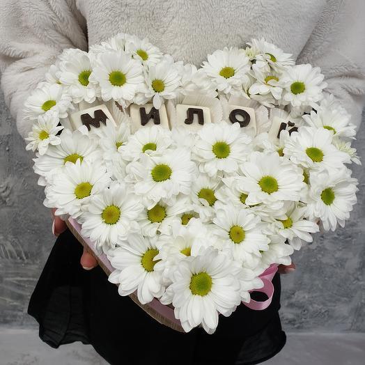 Сердце из ромашковой хризантемы Милой: букеты цветов на заказ Flowwow