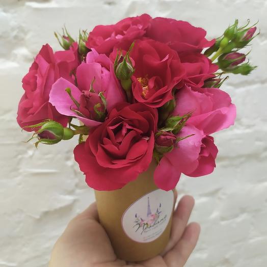 Розы в стаканчике