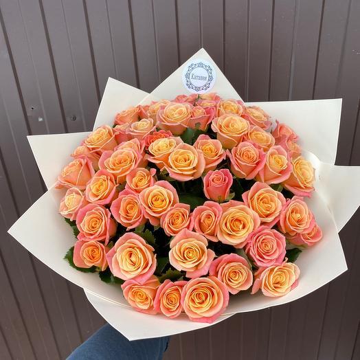 51 Роза Мисс Пигги