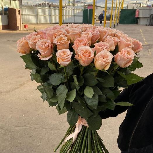 51 кремовая роза Кения
