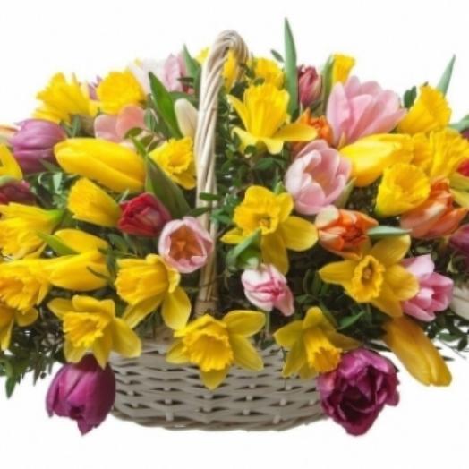 Корзина из разноцветных тюльпанов и желтых нарциссов