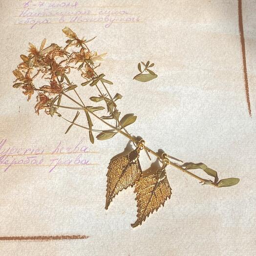 Серьги Листья Березы в золоте. Тичино