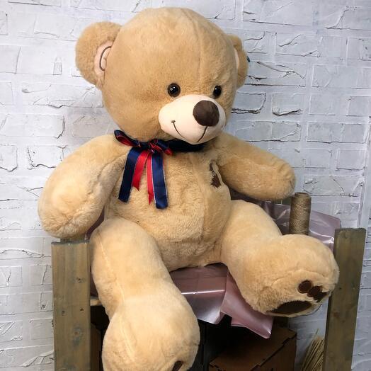 Медведь Боня