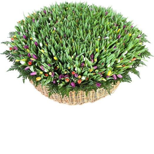 1001 Тюльпан микс: букеты цветов на заказ Flowwow