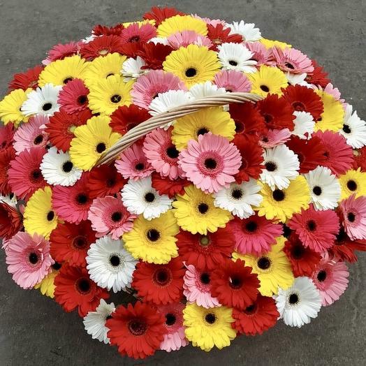 101 гербера в корзине: букеты цветов на заказ Flowwow