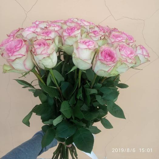 Букет из 25 нежно розовой Голландской розы 70 см: букеты цветов на заказ Flowwow