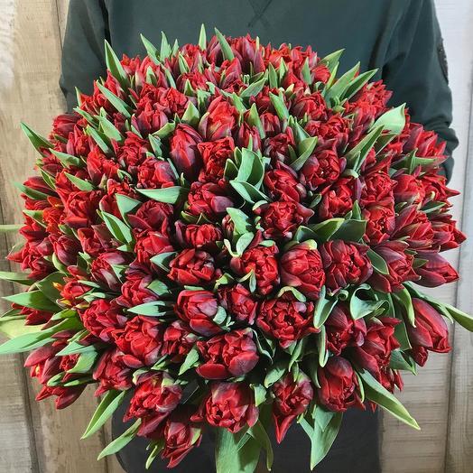 "Букет из 101 тюльпана ""Red princess"""