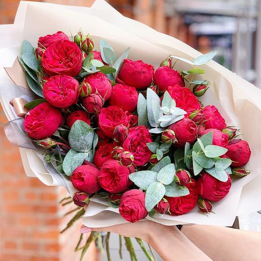 Шикарная пионовидная Роза