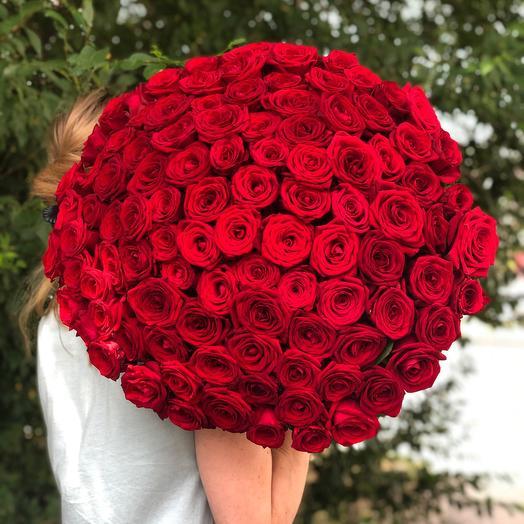 101  Роза Россия 60см