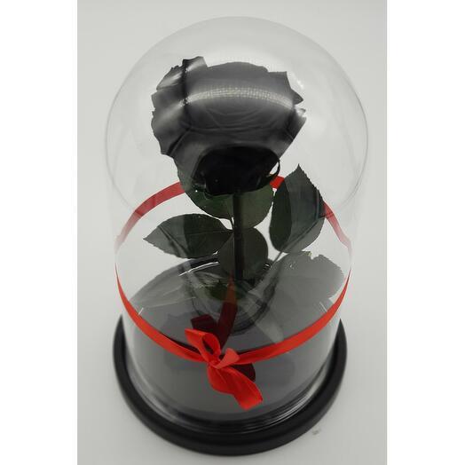 Роза в колбе премиум 7-8 Черная 27*15*8см