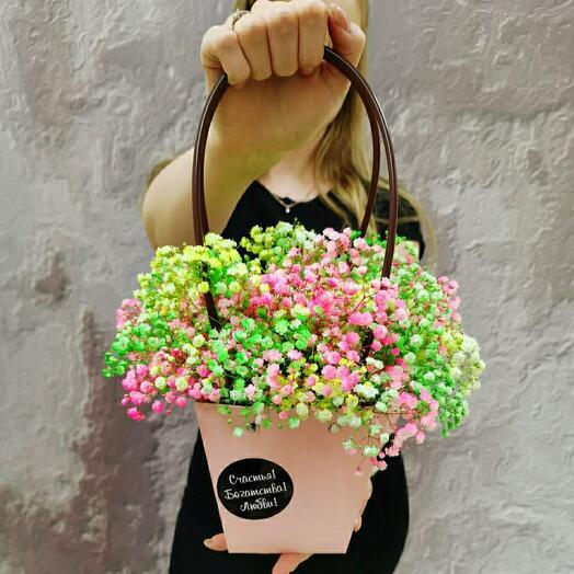 Радужная сумочка из гипсофилы