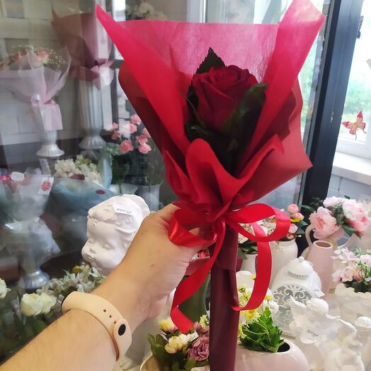 Роза в индивидуальной упаковке