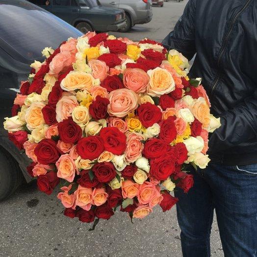 151 роза
