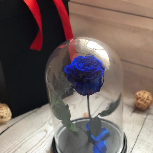 Живая синяя роза в колбе: букеты цветов на заказ Flowwow