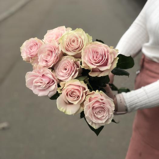 Роза Пинк Мондиаль премиум 9: букеты цветов на заказ Flowwow