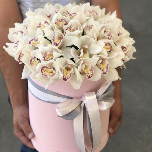 51 Орхидея в Коробке: букеты цветов на заказ Flowwow