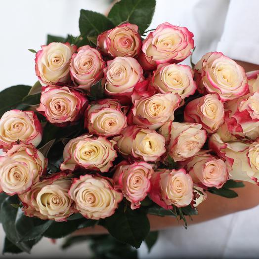 25 бело-розовых роз