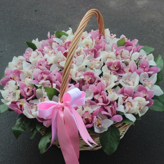 Нежная корзина орхидей: букеты цветов на заказ Flowwow