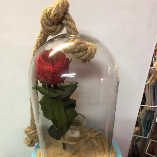 Пионовидная роза в колбе