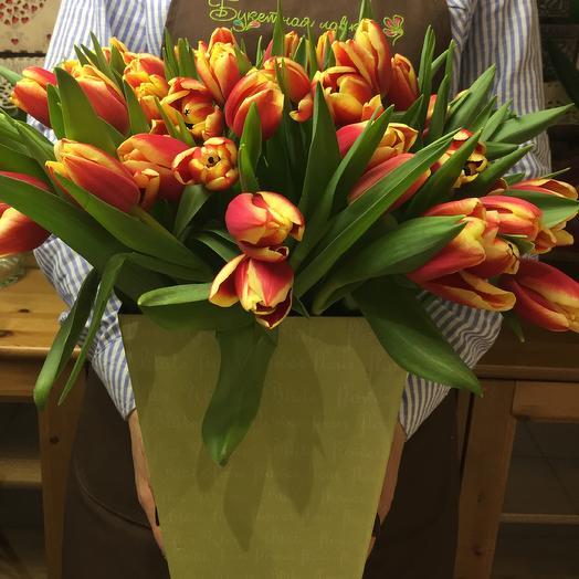 51 Tulip in box