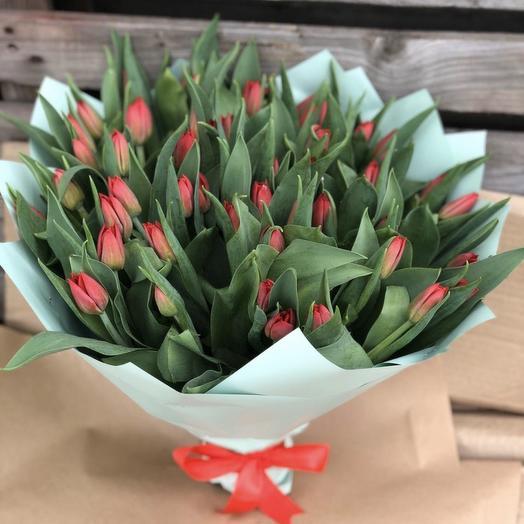 Букет из 51 тюльпана