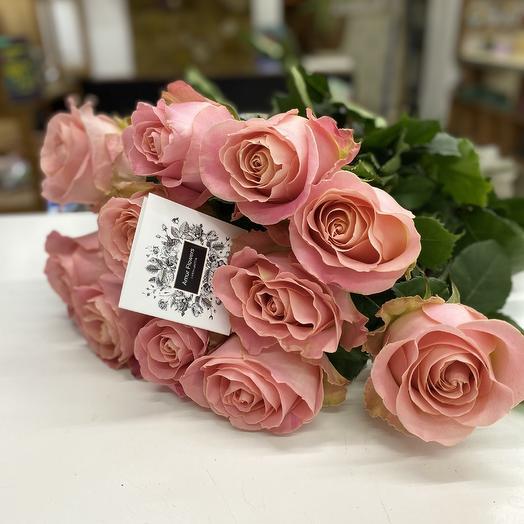 Роза хермоса