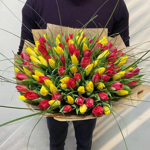 Тюльпан 101