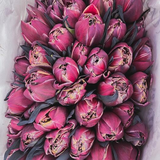 Моно букет махровых тюльпанов