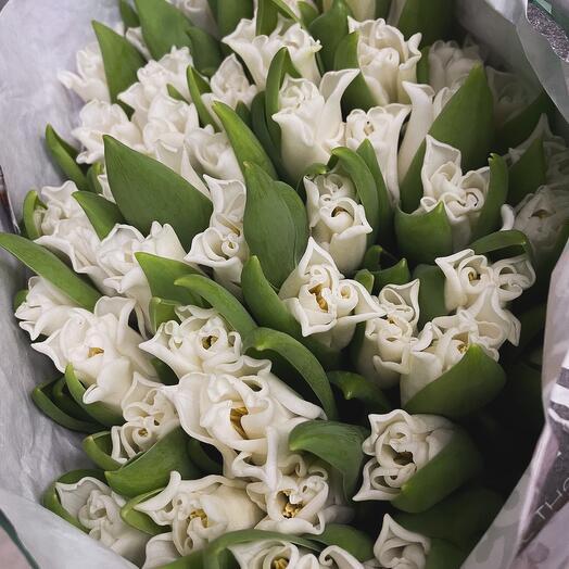 Моно букет сортовых тюльпанов