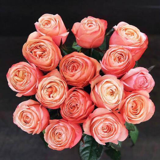 Пионовидные розы 11 шт