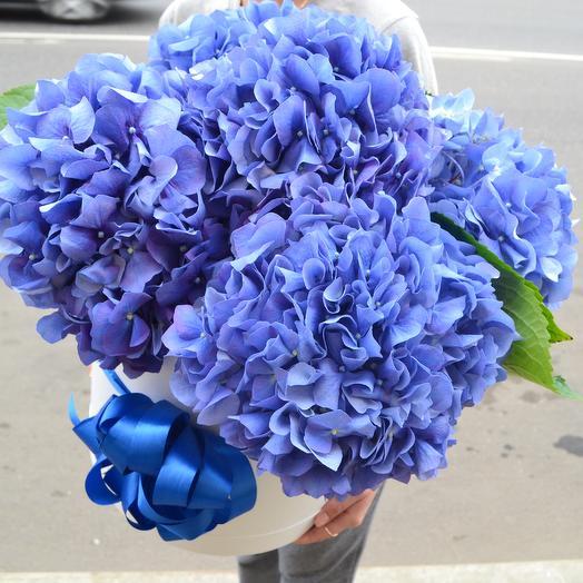 Небесное сияние: букеты цветов на заказ Flowwow