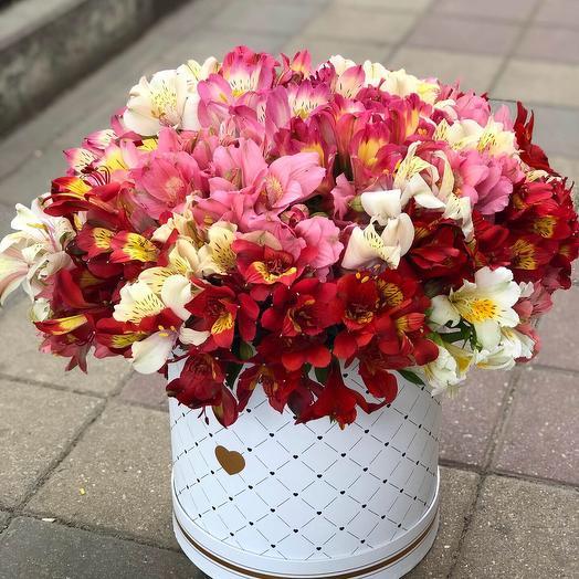 Альстромерии в коробке: букеты цветов на заказ Flowwow