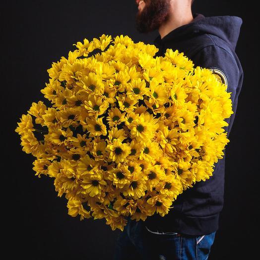 35 кустовых хризантем: букеты цветов на заказ Flowwow