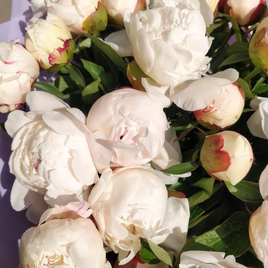 Букет из 39 пионов: букеты цветов на заказ Flowwow
