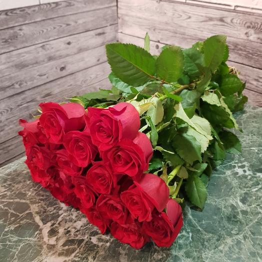 Розы Амор  лав