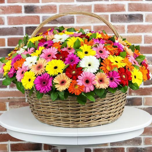 Корзина из 101 герберы. N799: букеты цветов на заказ Flowwow