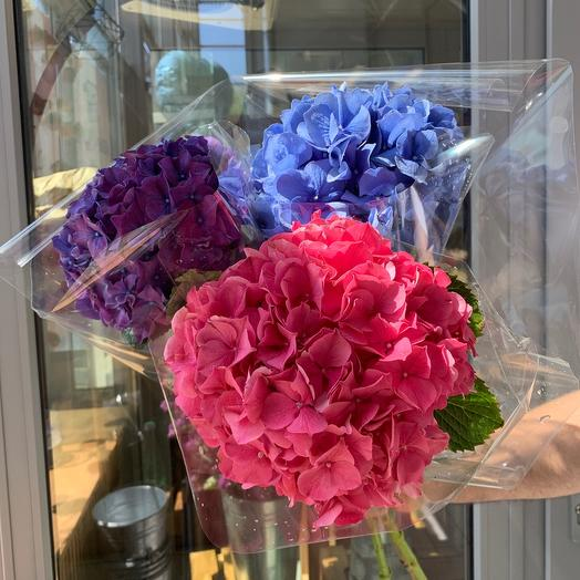 Букет из гортензий: букеты цветов на заказ Flowwow