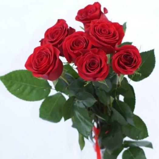 7 Red roses under the ribbon