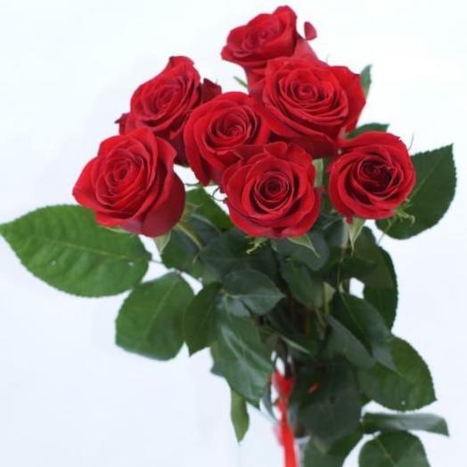 ✅ 7 Красных роз под ленту