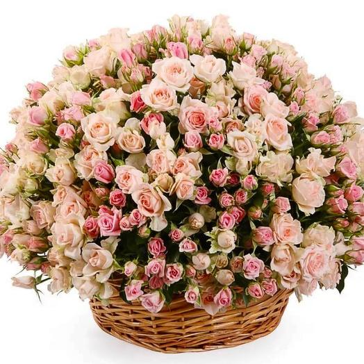 101 кустовая Роза в корзинке