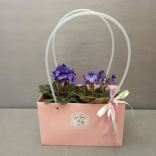 Фиалки в сумочке