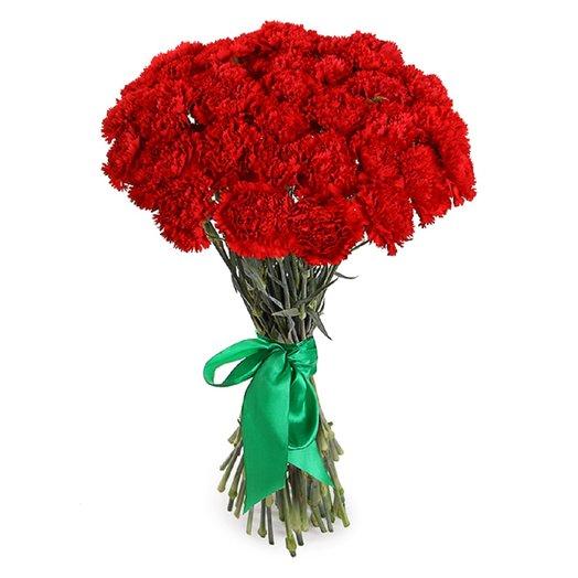 35 Гвозидик: букеты цветов на заказ Flowwow