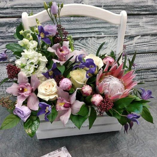 Ящик с протеей: букеты цветов на заказ Flowwow