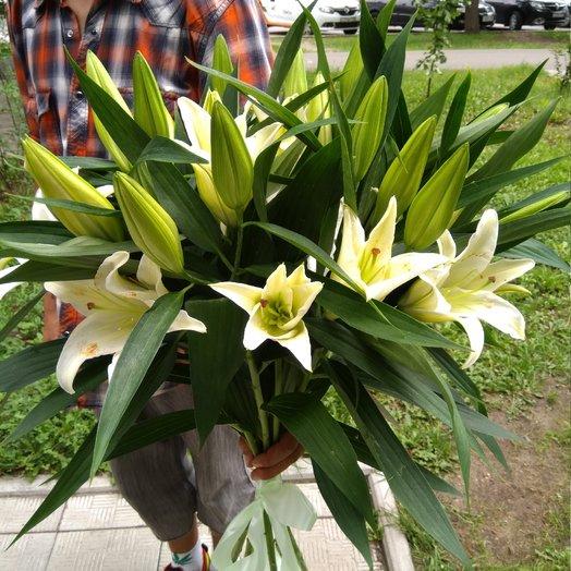 7 Лилий: букеты цветов на заказ Flowwow