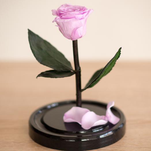 Роза в колбе Мини розовая: букеты цветов на заказ Flowwow