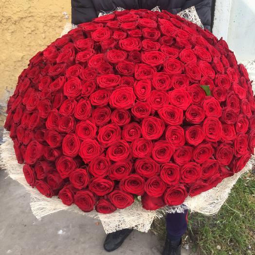 Огромное Счастье: букеты цветов на заказ Flowwow