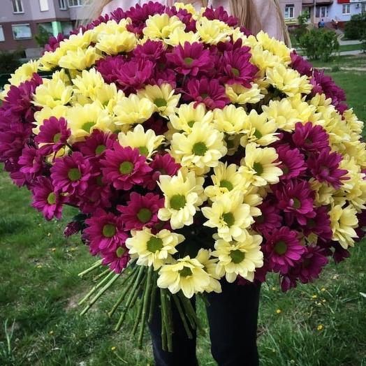 Жизненные силы природы: букеты цветов на заказ Flowwow